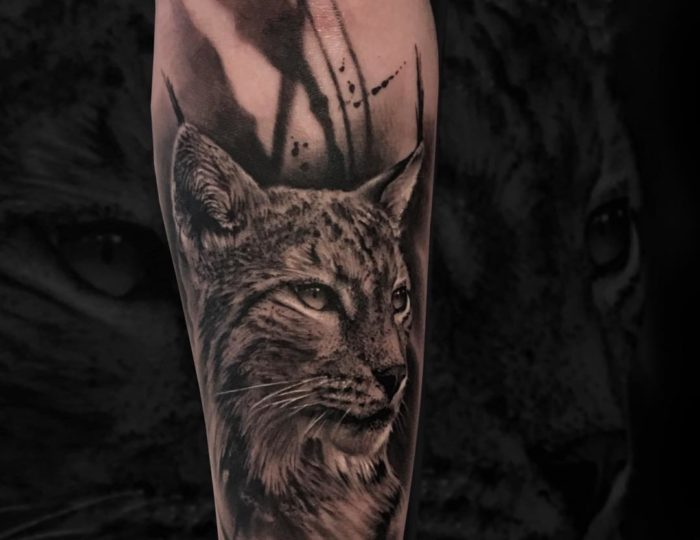 Lynx 🐈 with abstract background